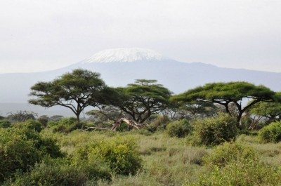 Mt Kilimanjaro from Amboselli National park